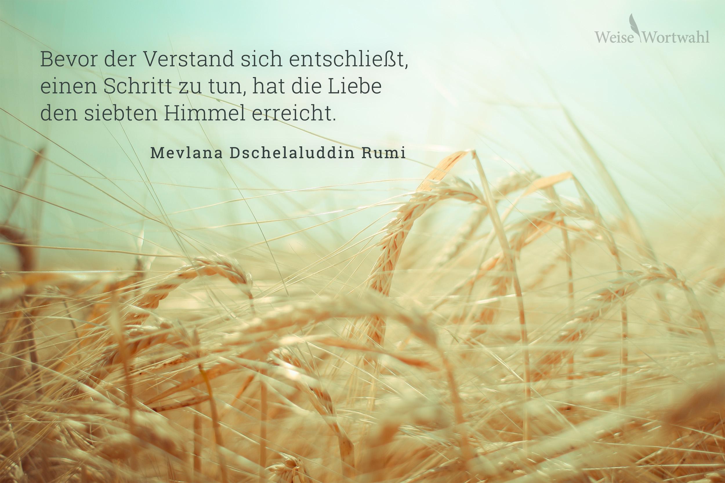 Bevor der Verstand sich entschließt, einen Schritt zu tun, hat die ...: weisewortwahl.de/zitat-hintergrundbilder-desktop